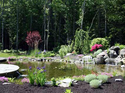 Water Garden Design and Install.